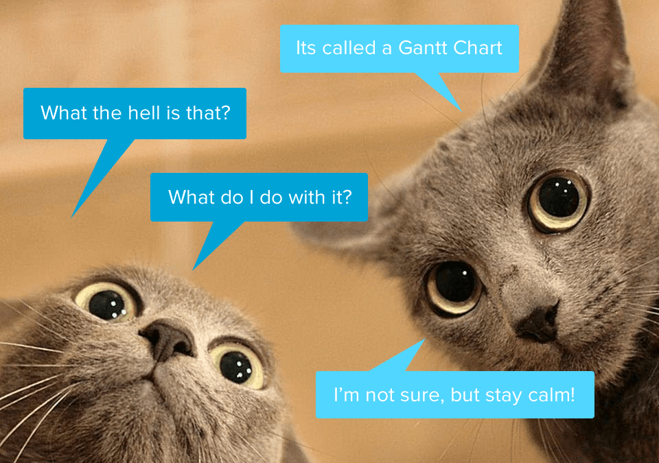 When is the last time you looked at a Gantt Chart?